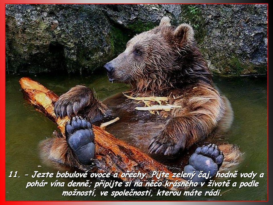 10. - Jezte více potravin, které pocházejí ze stromů a rostlin. Jezte méně vyráběných potravin.