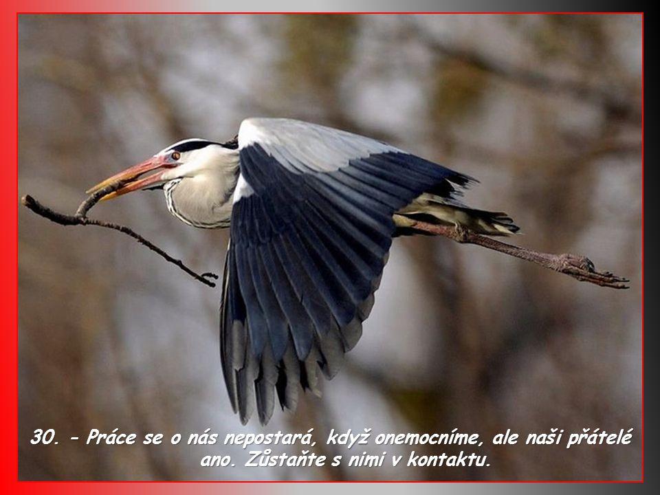 29.- Ať už je v životě situace dobrá, nebo zlá, vždy počítejte s tím, že se změní a obrátí.