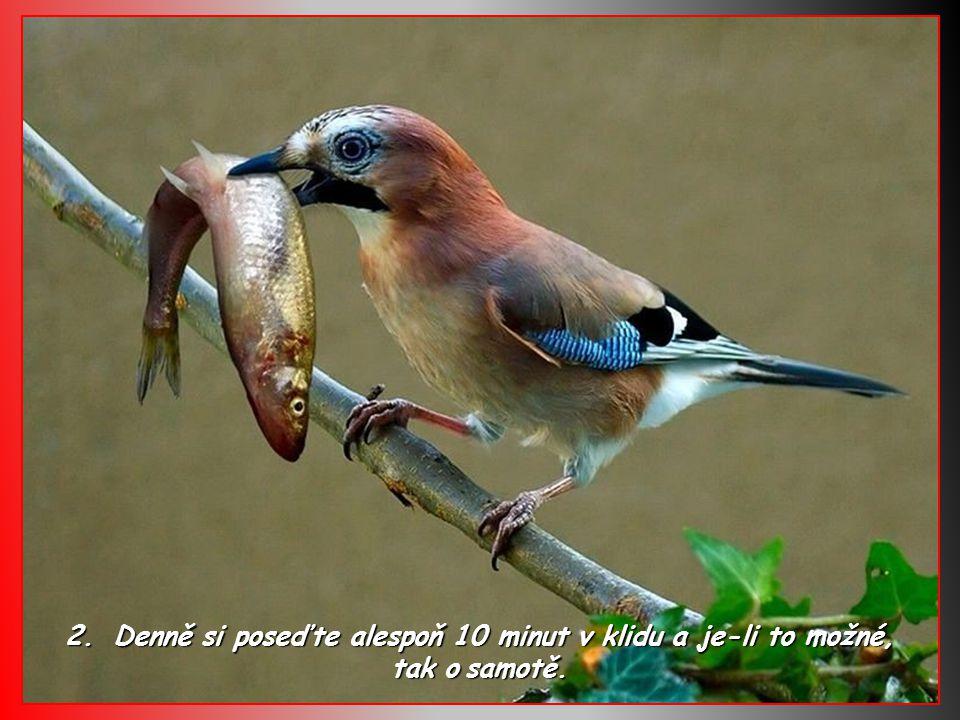 22. – Smiřte se svojí minulostí, aby nezničila Vaši přítomnost.