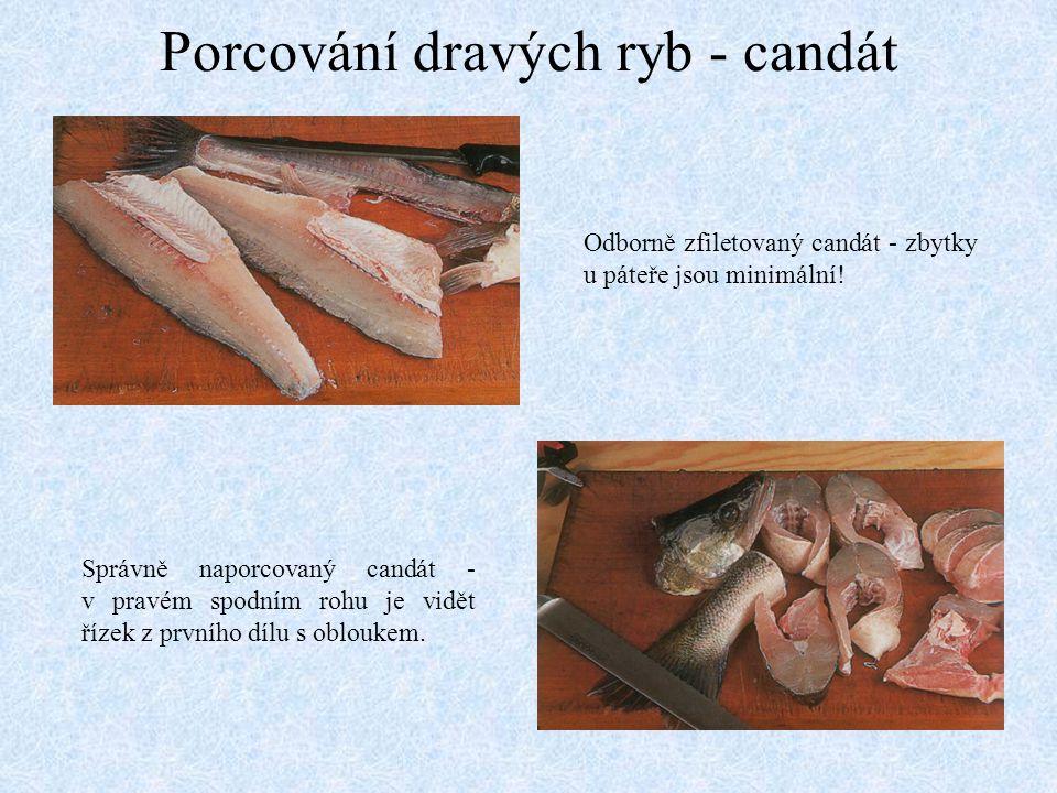 Porcování dravých ryb - candát Odborně zfiletovaný candát - zbytky u páteře jsou minimální! Správně naporcovaný candát - v pravém spodním rohu je vidě
