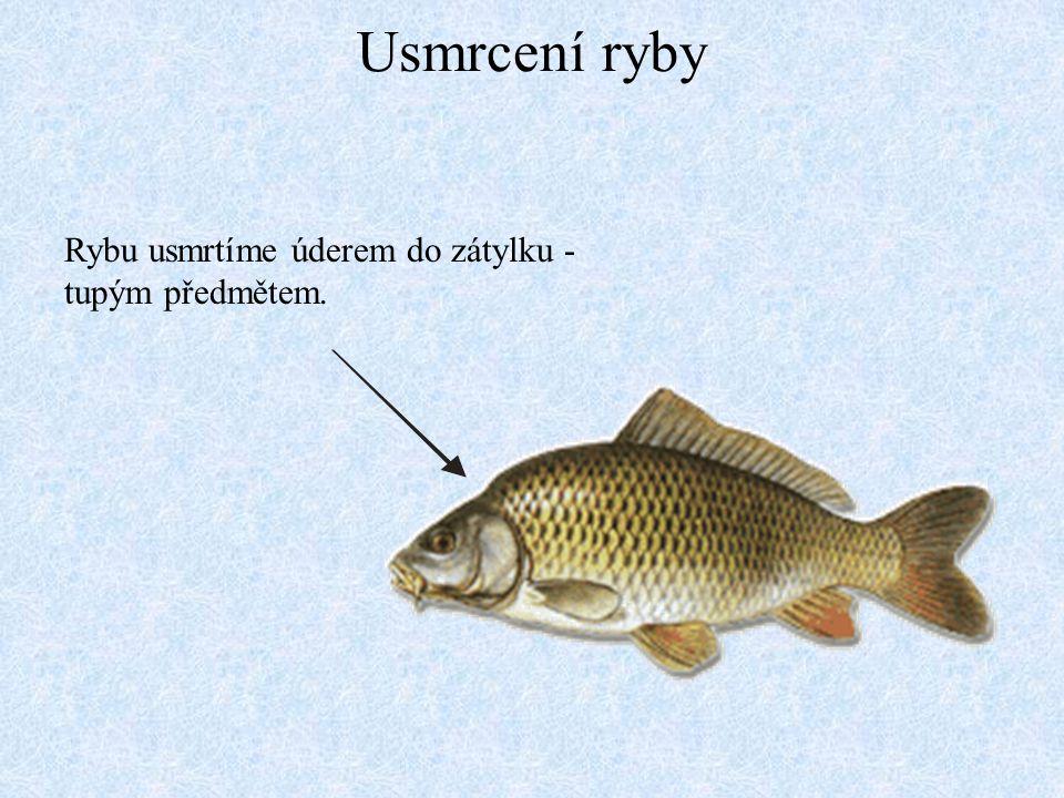 Porcování dravých ryb - okoun Zfiletováním okouna získáme opravdovou lahůdku.