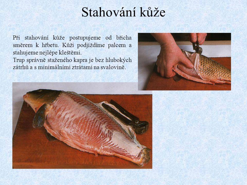 Rybí vnitřnosti Při vyvrhování vnitřností dáváme pozor zejména na žlučový váček, který se nachází v přední části ryby.