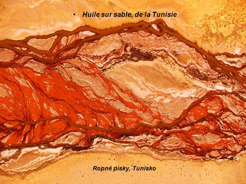 Huile sur sable, de la Tunisie Ropné písky, Tunisko