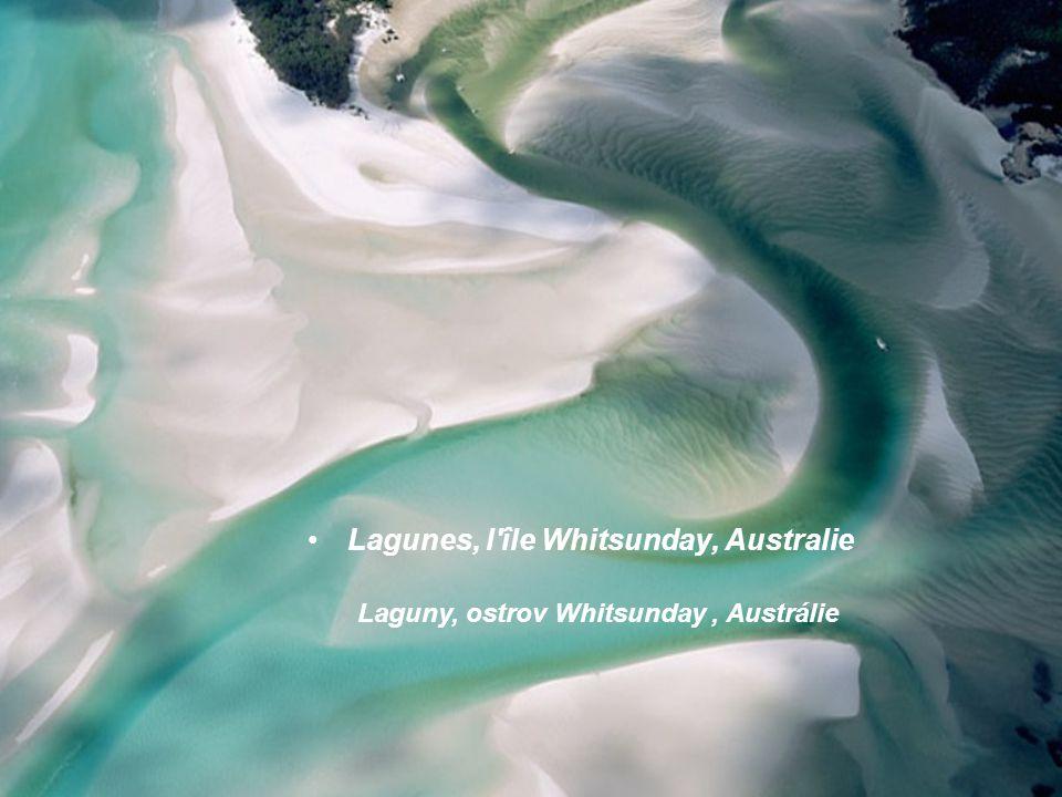 Lagunes, l île Whitsunday, Australie Laguny, ostrov Whitsunday, Austrálie