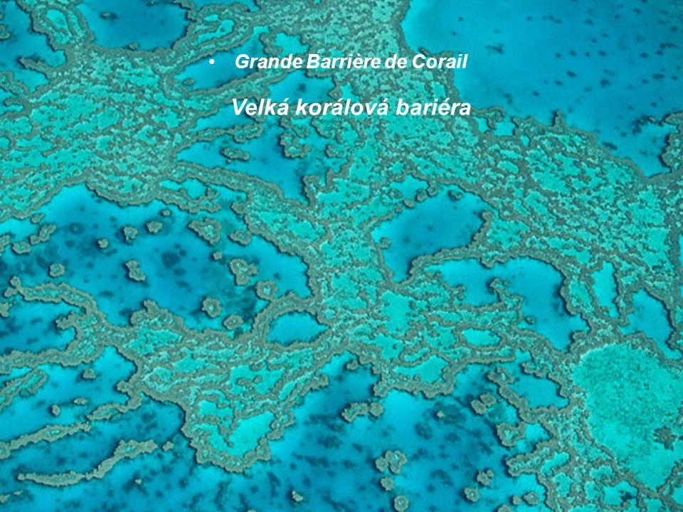 Grande Barrière de Corail Velká korálová bariéra