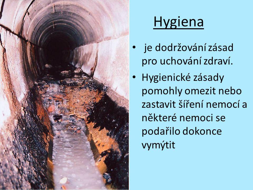 Hygiena je dodržování zásad pro uchování zdraví. Hygienické zásady pomohly omezit nebo zastavit šíření nemocí a některé nemoci se podařilo dokonce vym