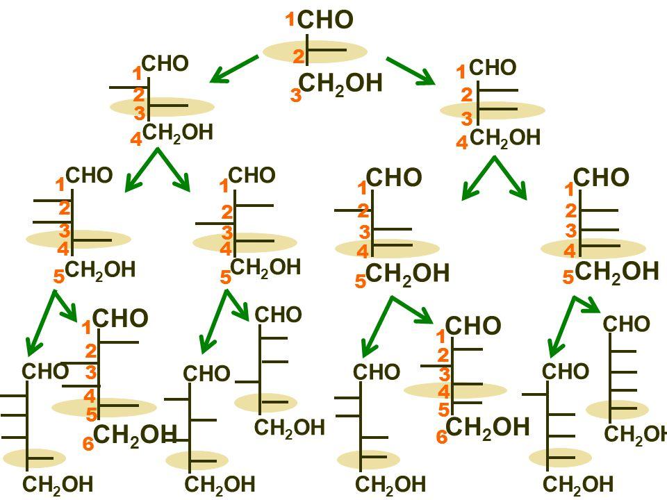 CHO CH 2 OH 1 2 3 CHO CH 2 OH 5 4 1 2 3 CHO CH 2 OH 5 4 1 2 3 CHO CH 2 OH 5 4 1 2 3 6 CHO CH 2 OH 5 4 1 2 3 6 CHO CH 2 OH D-glukosa D-galakosa D- arabinosa D- ribosa D-manosa D-glyceraldehyd Důležité monosacharidy