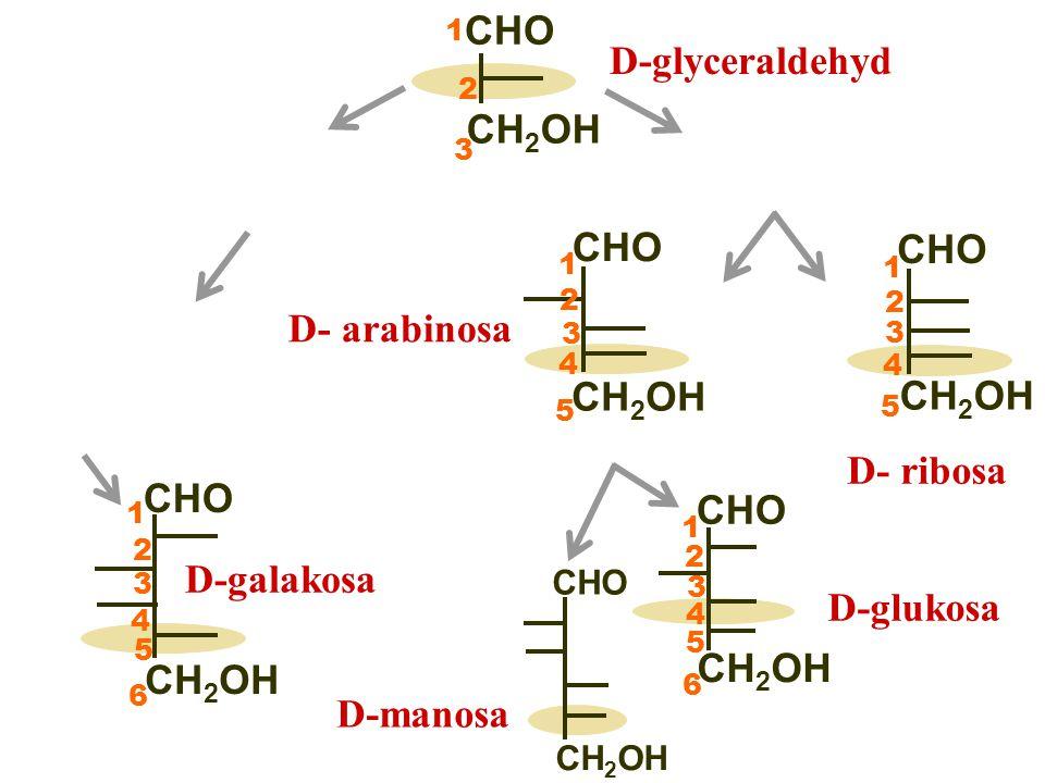  dvojice monosacharidů lišící se pouze konfigurací na C* sousedícím s aldo/oxoskupinou CHO CH 2 OH CHO CH 2 OH O O D-glukosa D-fruktosaD-psikosa D-manosa D-galaktosa  v širším slova smyslu i dvojice lišící se na jednom C* jiném než referenčním CHO CH 2 OH CHO CH 2 OH D-glukosaEpimery