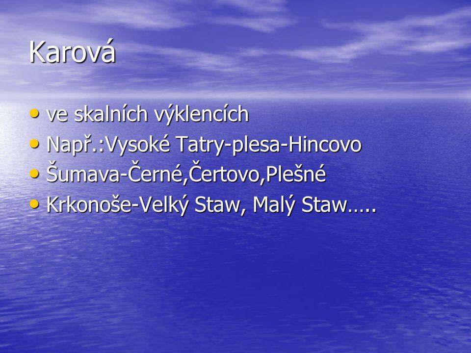 Karová ve skalních výklencích ve skalních výklencích Např.:Vysoké Tatry-plesa-Hincovo Např.:Vysoké Tatry-plesa-Hincovo Šumava-Černé,Čertovo,Plešné Šumava-Černé,Čertovo,Plešné Krkonoše-Velký Staw, Malý Staw…..