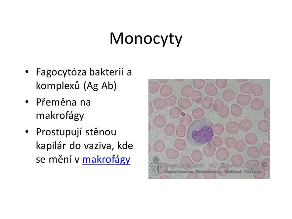 Monocyty Fagocytóza bakterií a komplexů (Ag Ab) Přeměna na makrofágy Prostupují stěnou kapilár do vaziva, kde se mění v makrofágymakrofágy
