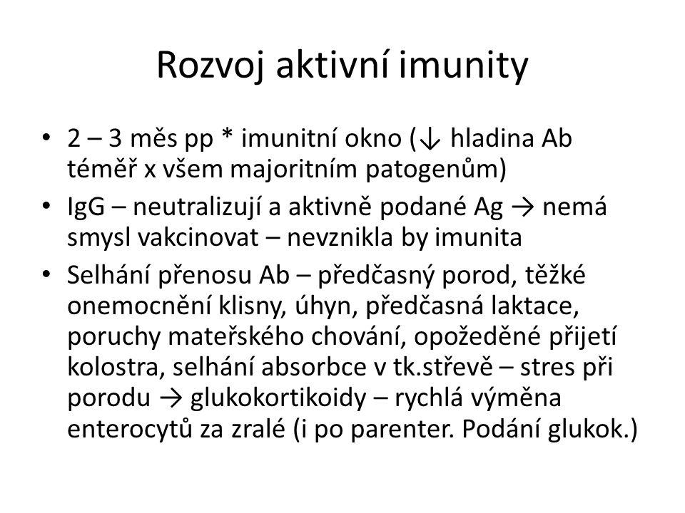 Rozvoj aktivní imunity 2 – 3 měs pp * imunitní okno (↓ hladina Ab téměř x všem majoritním patogenům) IgG – neutralizují a aktivně podané Ag → nemá smysl vakcinovat – nevznikla by imunita Selhání přenosu Ab – předčasný porod, těžké onemocnění klisny, úhyn, předčasná laktace, poruchy mateřského chování, opožeděné přijetí kolostra, selhání absorbce v tk.střevě – stres při porodu → glukokortikoidy – rychlá výměna enterocytů za zralé (i po parenter.