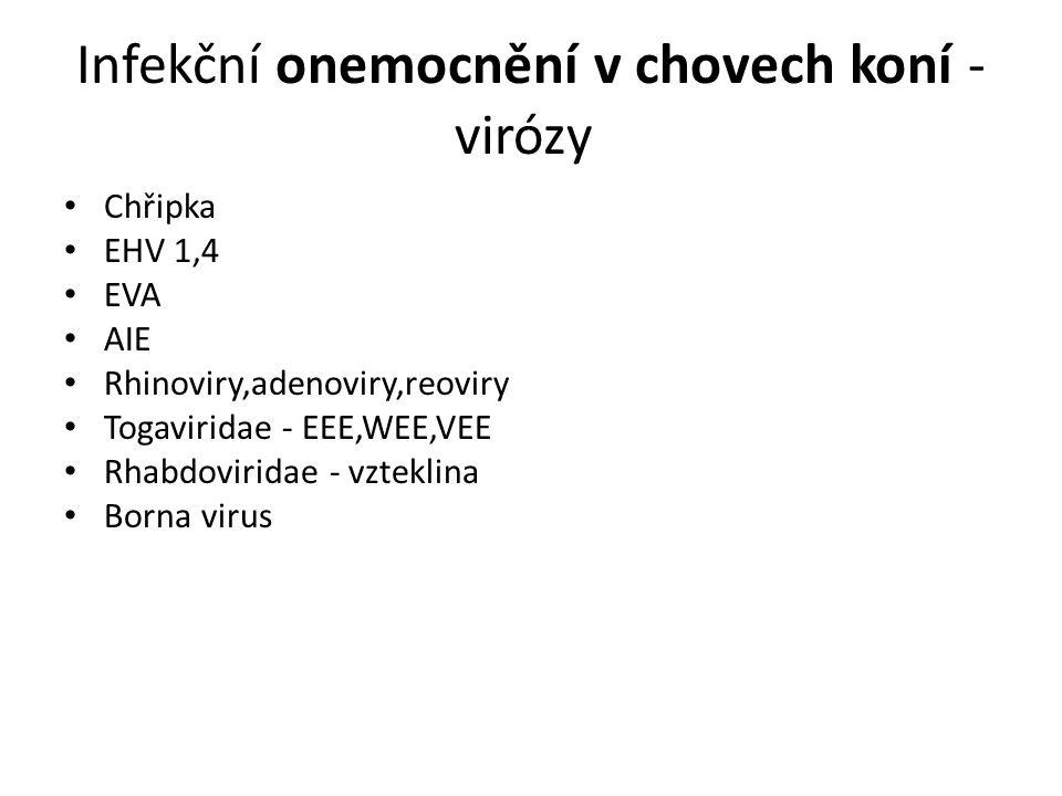 Infekční onemocnění v chovech koní - virózy Chřipka EHV 1,4 EVA AIE Rhinoviry,adenoviry,reoviry Togaviridae - EEE,WEE,VEE Rhabdoviridae - vzteklina Borna virus