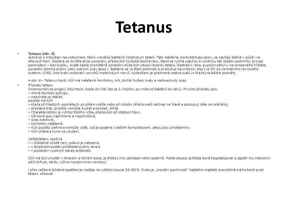 Tetanus Tetanus (obr.
