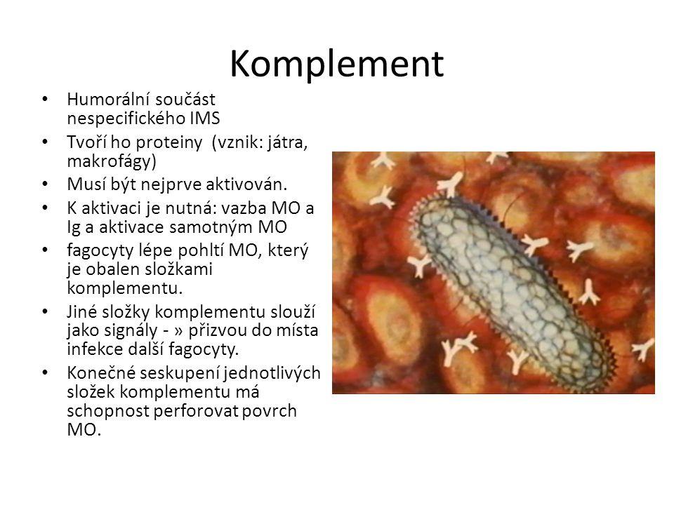 Zánět (latinsky Inflammatio, řecky Phlogosis)latinskyřecky Reakce na poškození buněk, tkání nebo průnik infekce.