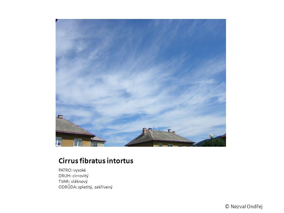 Cirrus fibratus intortus PATRO: vysoké DRUH: cirrovitý TVAR: vláknový ODRŮDA: spletitý, zakřivený © Nezval Ondřej