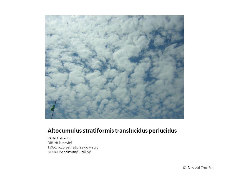 Altocumulus stratiformis translucidus perlucidus PATRO: střední DRUH: kupovitý TVAR: rozprostírající se do vrstvy ODRŮDA: průsvitný + zářivý © Nezval