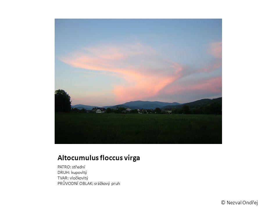 Altocumulus floccus virga PATRO: střední DRUH: kupovitý TVAR: vločkovitý PRŮVODNÍ OBLAK: srážkový pruh © Nezval Ondřej