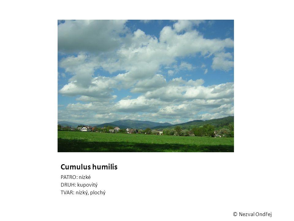 Cumulus humilis PATRO: nízké DRUH: kupovitý TVAR: nízký, plochý © Nezval Ondřej