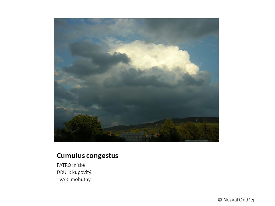 Cumulus congestus PATRO: nízké DRUH: kupovitý TVAR: mohutný © Nezval Ondřej