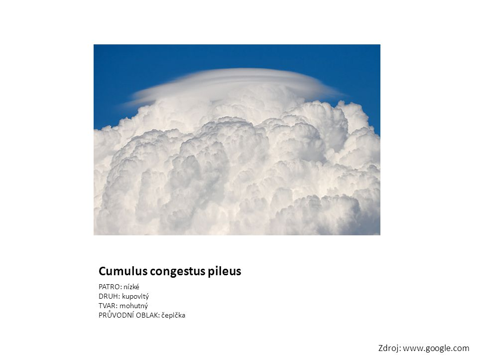 Cumulus congestus pileus PATRO: nízké DRUH: kupovitý TVAR: mohutný PRŮVODNÍ OBLAK: čepička Zdroj: www.google.com