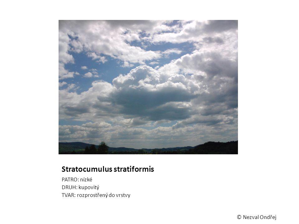 Stratocumulus stratiformis PATRO: nízké DRUH: kupovitý TVAR: rozprostřený do vrstvy © Nezval Ondřej