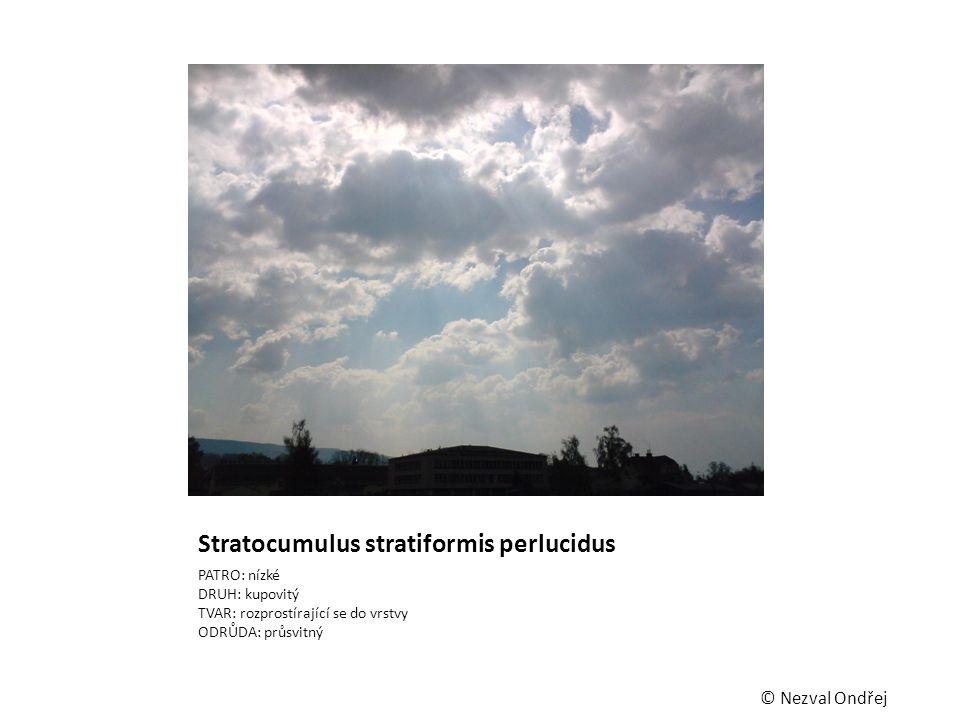 Stratocumulus stratiformis perlucidus PATRO: nízké DRUH: kupovitý TVAR: rozprostírající se do vrstvy ODRŮDA: průsvitný © Nezval Ondřej