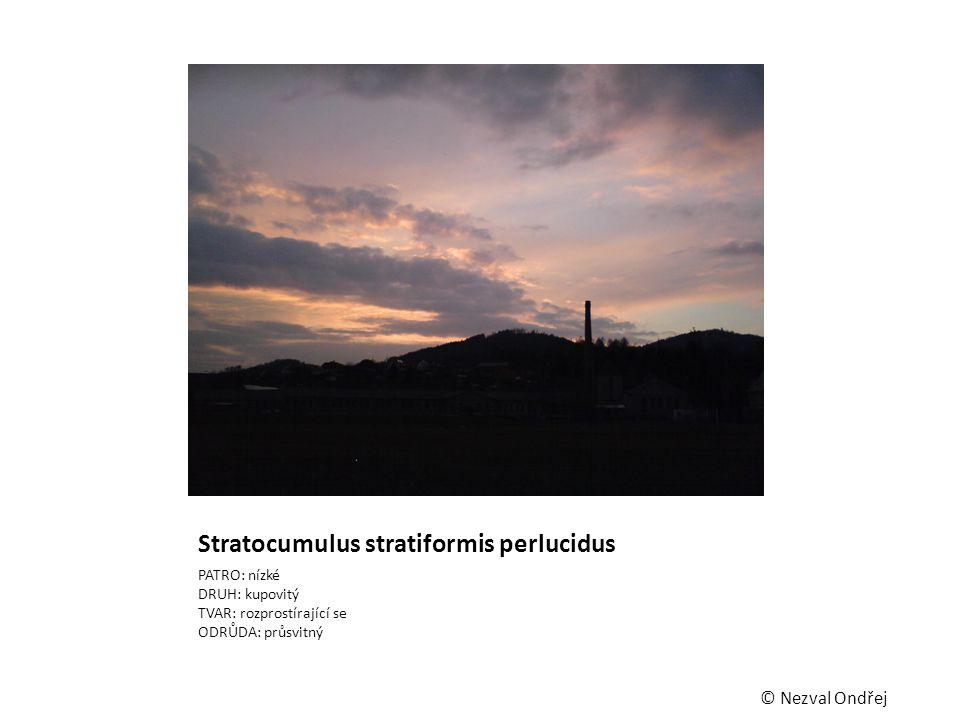 Stratocumulus stratiformis perlucidus PATRO: nízké DRUH: kupovitý TVAR: rozprostírající se ODRŮDA: průsvitný © Nezval Ondřej