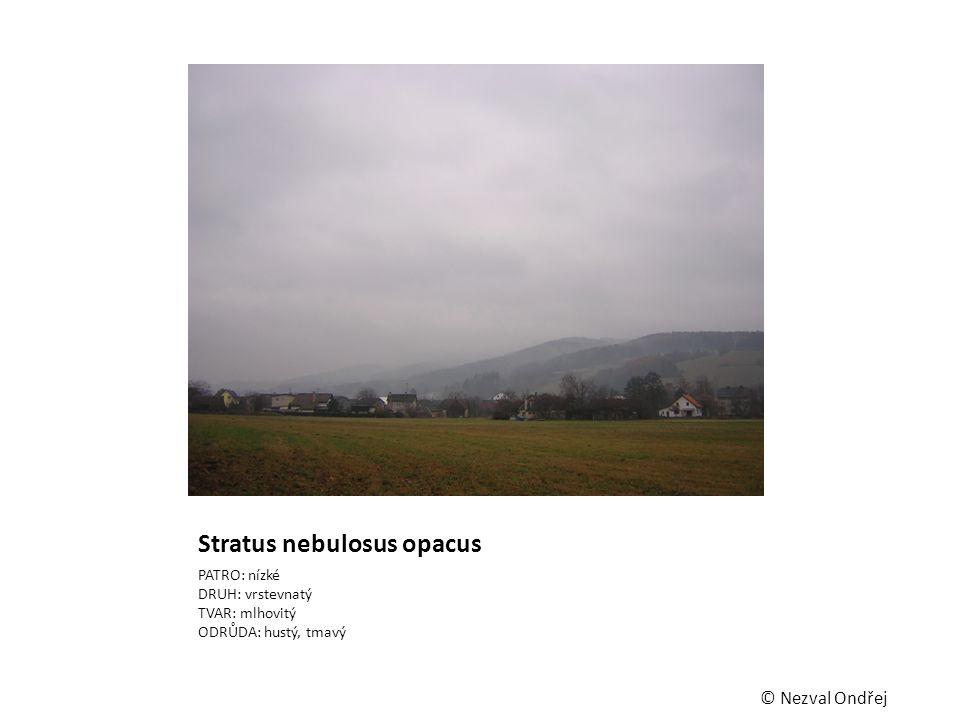 Stratus nebulosus opacus PATRO: nízké DRUH: vrstevnatý TVAR: mlhovitý ODRŮDA: hustý, tmavý © Nezval Ondřej