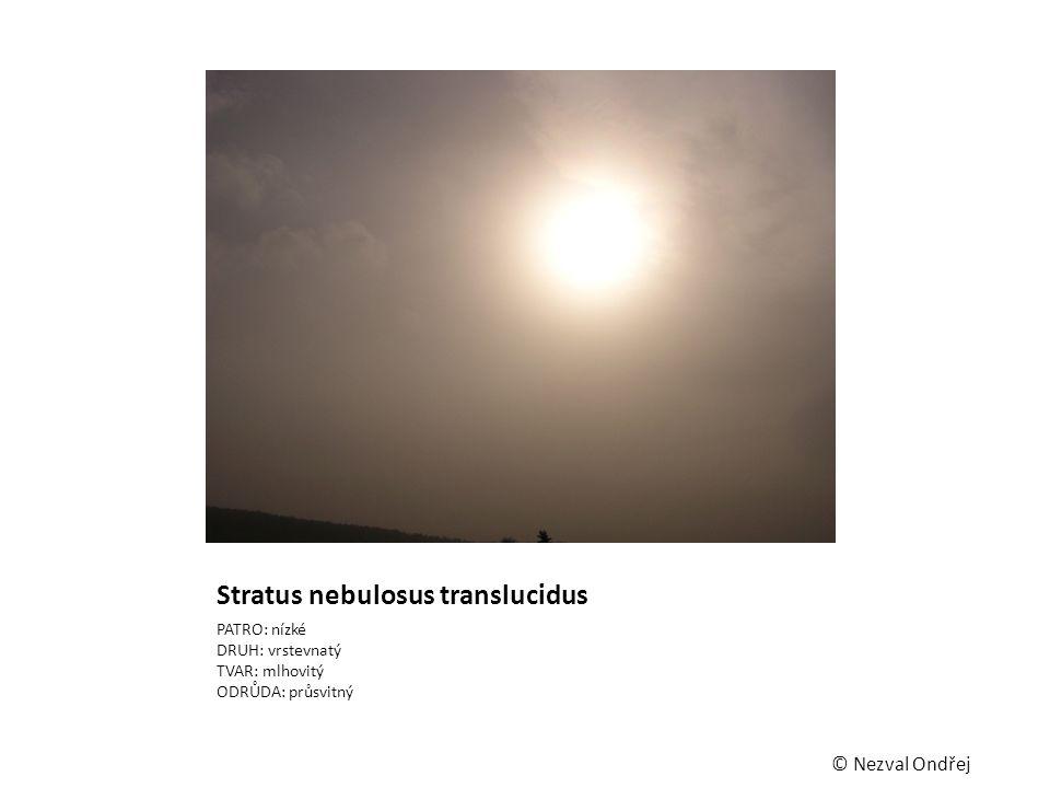 Stratus nebulosus translucidus PATRO: nízké DRUH: vrstevnatý TVAR: mlhovitý ODRŮDA: průsvitný © Nezval Ondřej