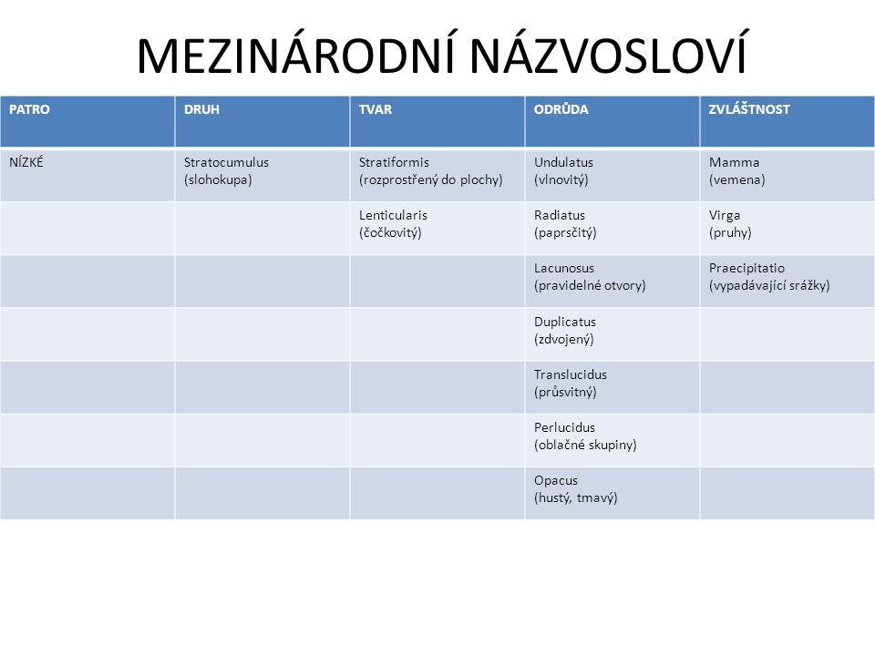 MEZINÁRODNÍ NÁZVOSLOVÍ PATRODRUHTVARODRŮDAZVLÁŠTNOST NÍZKÉStratocumulus (slohokupa) Stratiformis (rozprostřený do plochy) Undulatus (vlnovitý) Mamma (