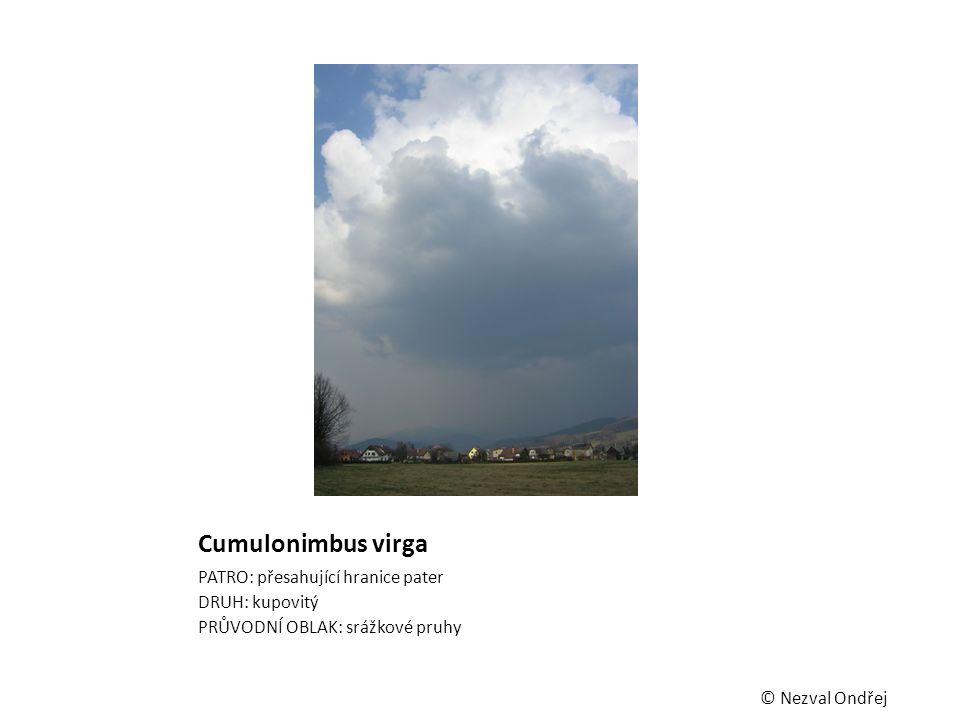 Cumulonimbus virga PATRO: přesahující hranice pater DRUH: kupovitý PRŮVODNÍ OBLAK: srážkové pruhy © Nezval Ondřej