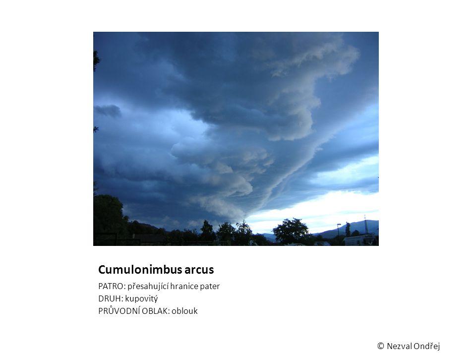 Cumulonimbus arcus PATRO: přesahující hranice pater DRUH: kupovitý PRŮVODNÍ OBLAK: oblouk © Nezval Ondřej