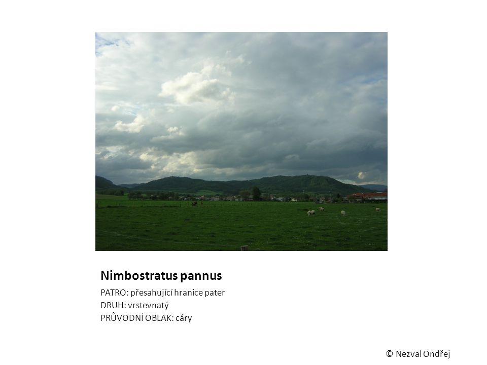 Nimbostratus pannus PATRO: přesahující hranice pater DRUH: vrstevnatý PRŮVODNÍ OBLAK: cáry © Nezval Ondřej