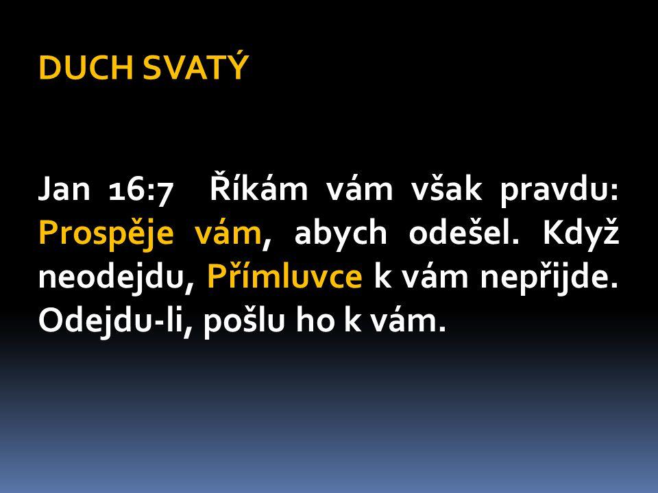 Důležitost křtu v Duchu Svatém  moc ke svědectví  radost, odvaha a smělost  nadpřirozené dary: proroctví, uzdravování, osvobozování, mocné činy, slova poznání a moudrosti  porozumění Božímu Slovu  větší citlivost na hřích (vlastní i jiných)  touha po Bohu a vnímání Boží blízkosti  modlitební jazyky  zmocnění ke službě  vítězství nad hříchem