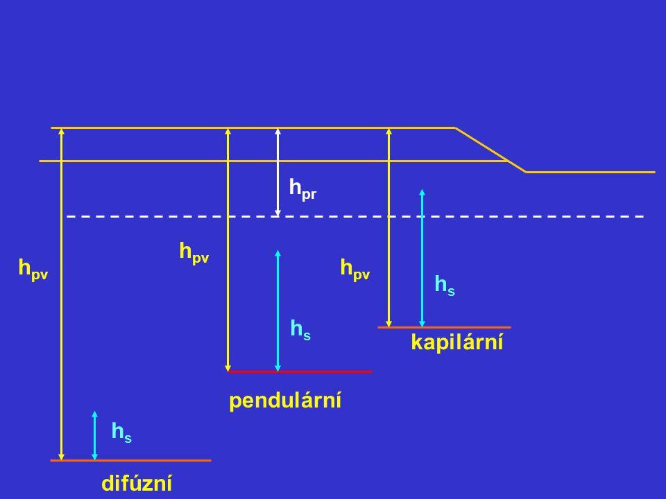 h pr h pv hshs hshs hshs difúzní pendulární kapilární