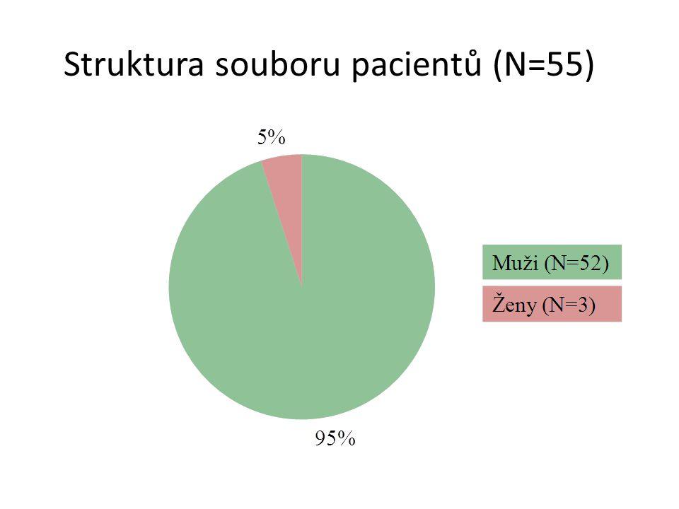 Struktura souboru pacientů (N=55)