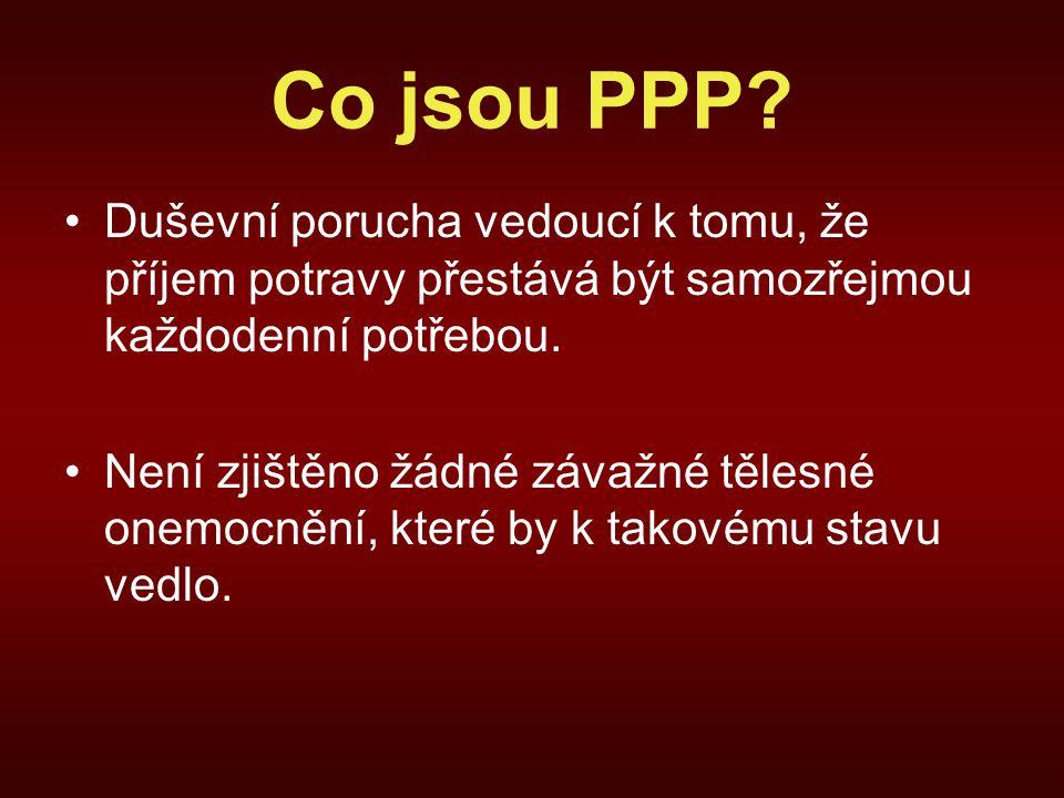 Co jsou PPP.