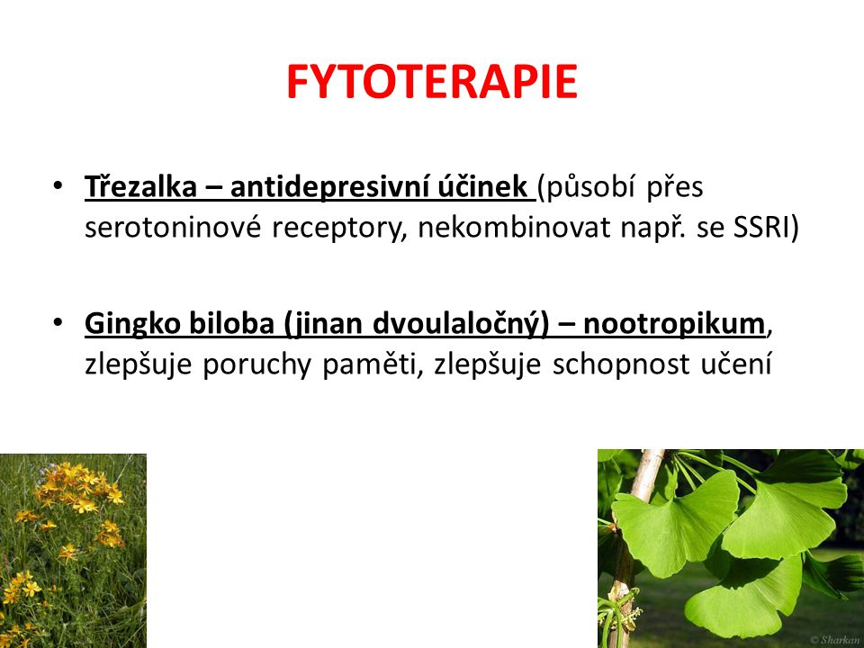 FYTOTERAPIE Třezalka – antidepresivní účinek (působí přes serotoninové receptory, nekombinovat např. se SSRI) Gingko biloba (jinan dvoulaločný) – noot
