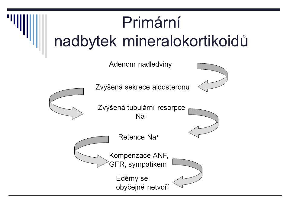 Primární nadbytek mineralokortikoidů Adenom nadledviny Zvýšená sekrece aldosteronu Retence Na + Kompenzace ANF, GFR, sympatikem Zvýšená tubulární resorpce Na + Edémy se obyčejně netvoří