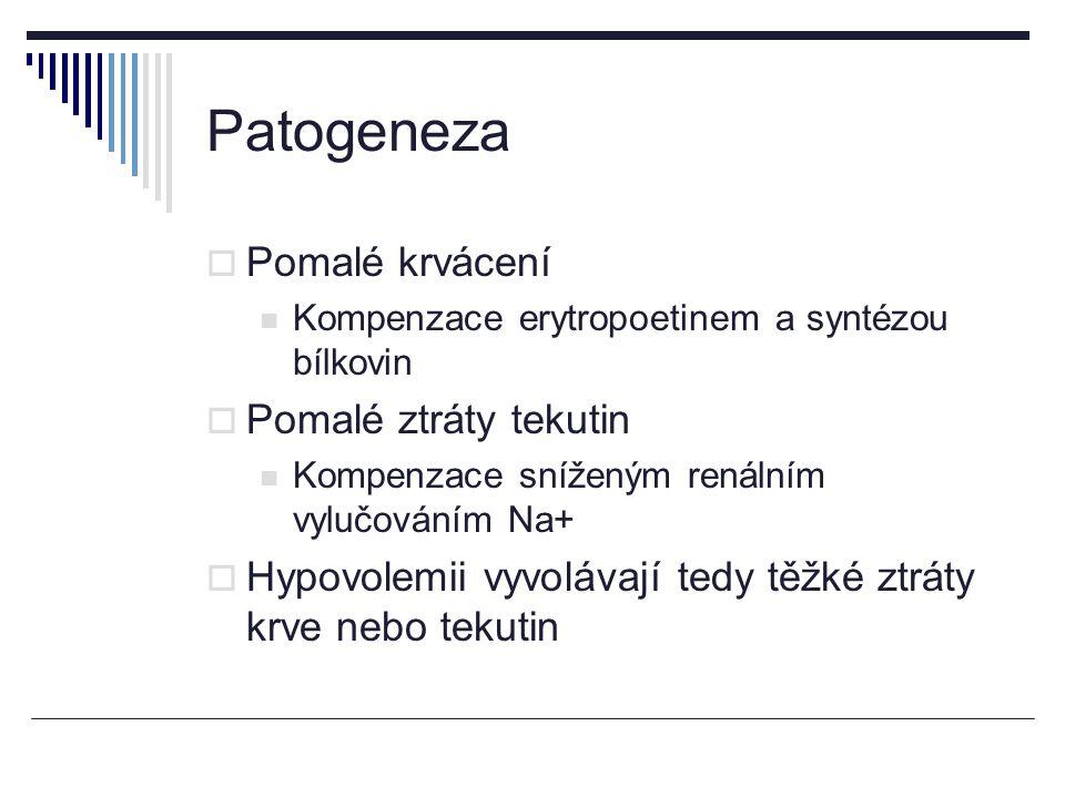 Patogeneza  Pomalé krvácení Kompenzace erytropoetinem a syntézou bílkovin  Pomalé ztráty tekutin Kompenzace sníženým renálním vylučováním Na+  Hypovolemii vyvolávají tedy těžké ztráty krve nebo tekutin