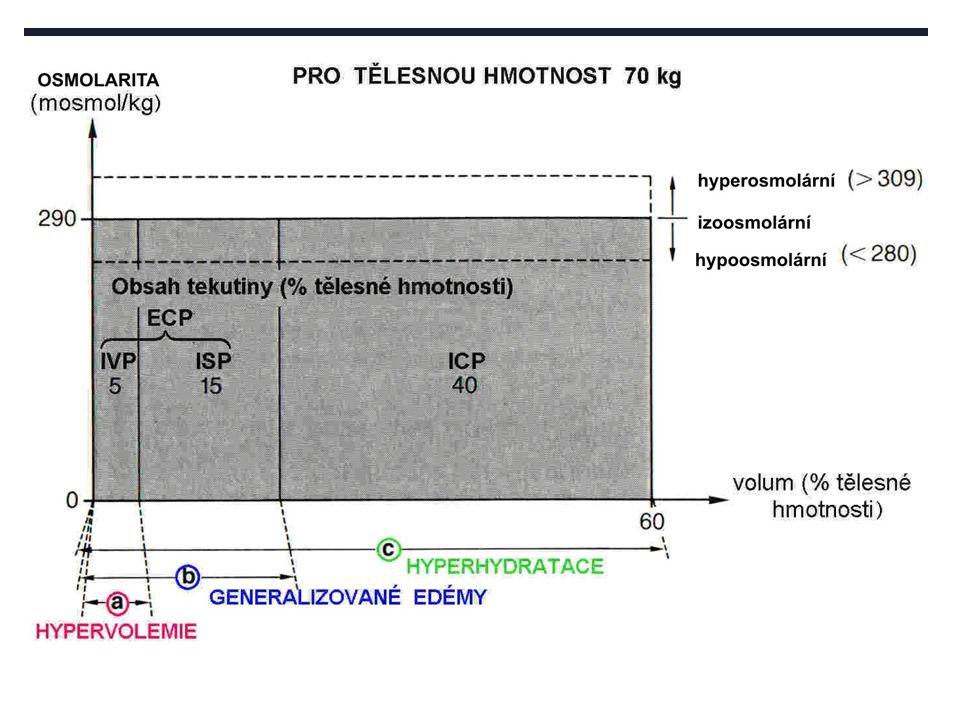 Regulace tonicity při ztrátách tekutin Ztráta tekutin Tvorba koncentrované moče Vzestup tonicity plazmy Pocit žízně Zadržování Na + a vody Příjem hypotonické tekutiny