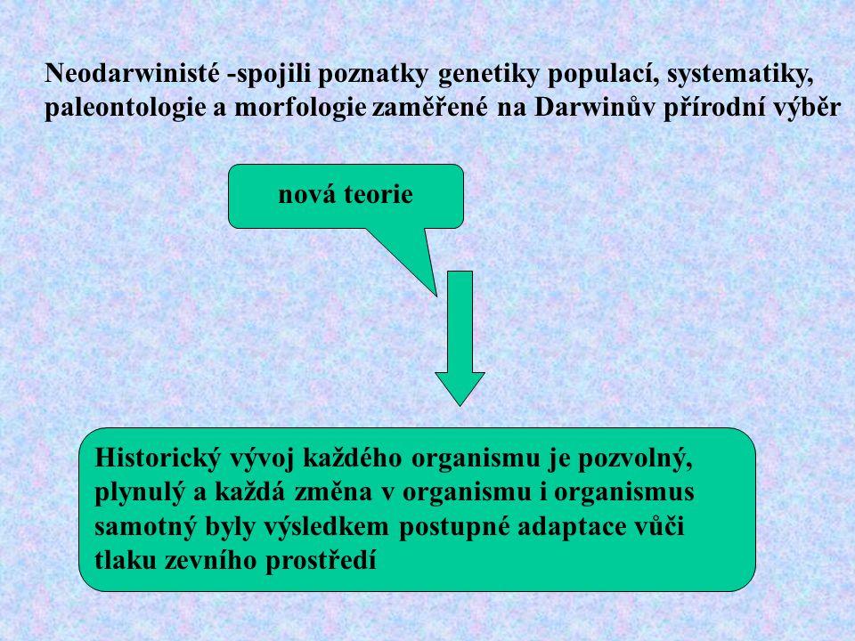Neodarwinisté -spojili poznatky genetiky populací, systematiky, paleontologie a morfologie zaměřené na Darwinův přírodní výběr nová teorie Historický