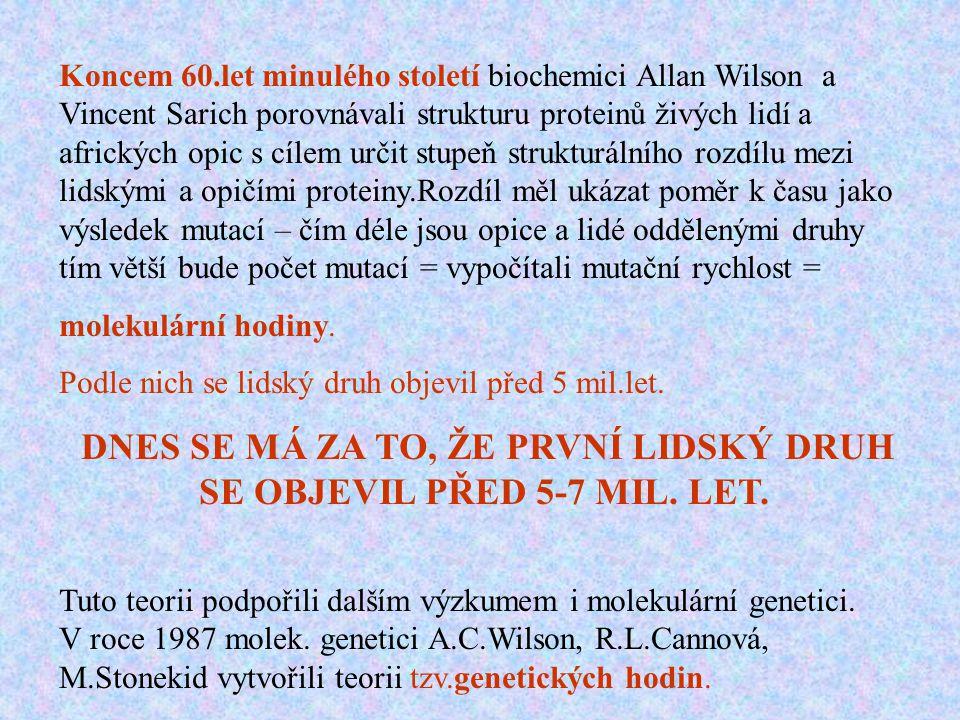 Koncem 60.let minulého století biochemici Allan Wilson a Vincent Sarich porovnávali strukturu proteinů živých lidí a afrických opic s cílem určit stup