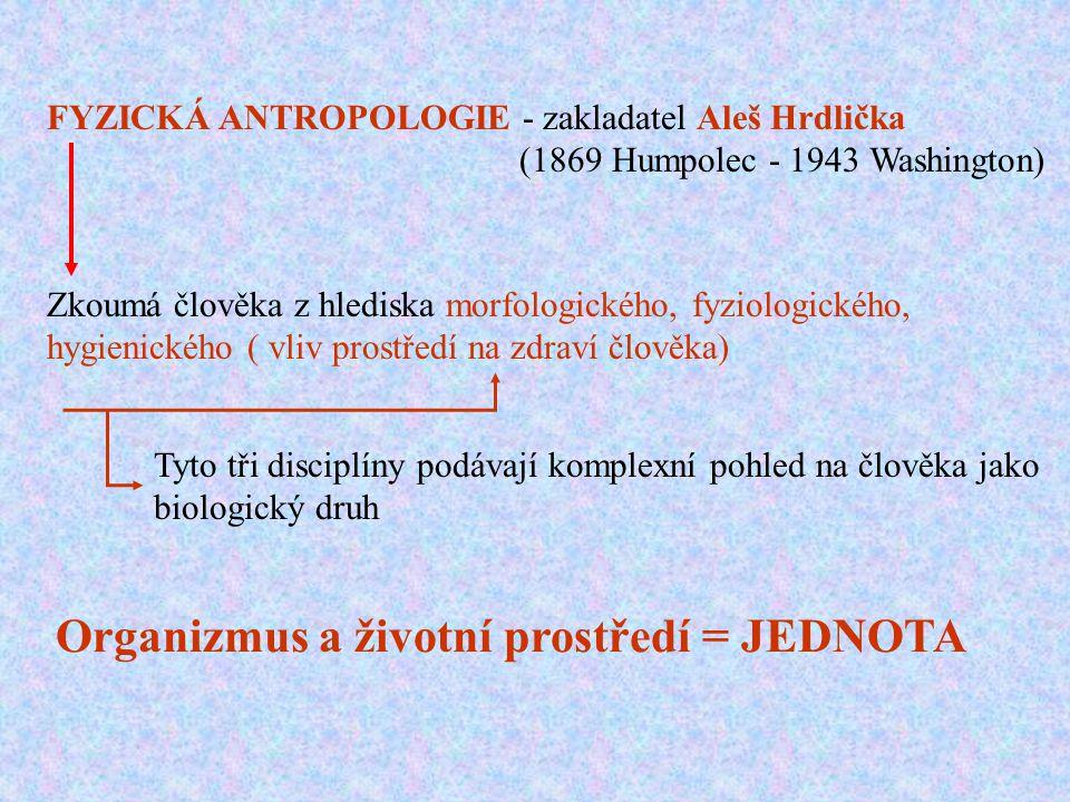 FYZICKÁ ANTROPOLOGIE - zakladatel Aleš Hrdlička (1869 Humpolec - 1943 Washington) Zkoumá člověka z hlediska morfologického, fyziologického, hygienické