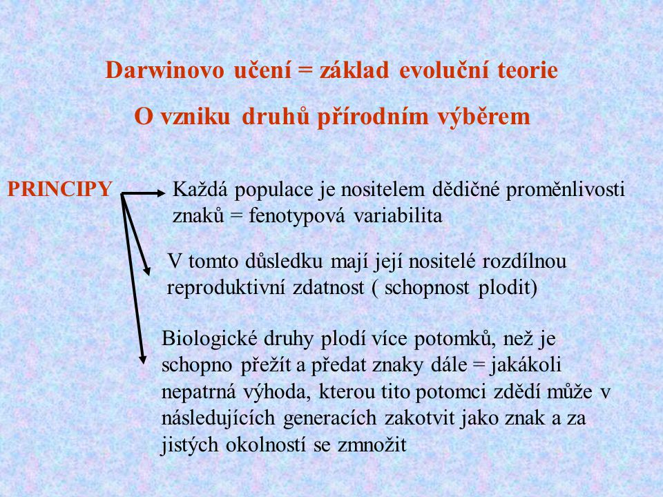 Darwinovo učení = základ evoluční teorie O vzniku druhů přírodním výběrem PRINCIPYKaždá populace je nositelem dědičné proměnlivosti znaků = fenotypová