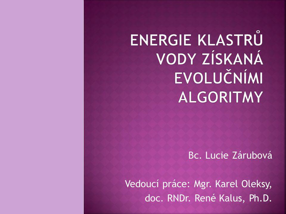 Bc. Lucie Zárubová Vedoucí práce: Mgr. Karel Oleksy, doc. RNDr. René Kalus, Ph.D.