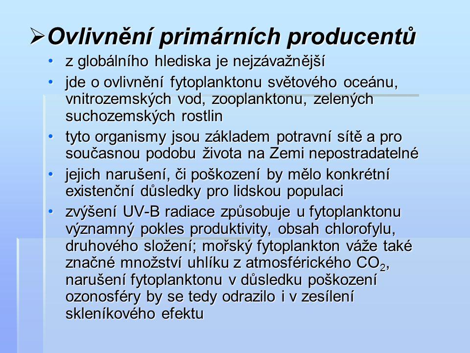  Ovlivnění primárních producentů z globálního hlediska je nejzávažnějšíz globálního hlediska je nejzávažnější jde o ovlivnění fytoplanktonu světového