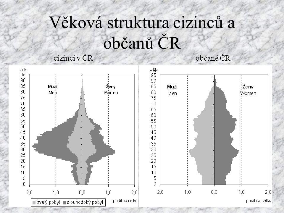 Věková struktura cizinců a občanů ČR cizinci v ČRobčané ČR
