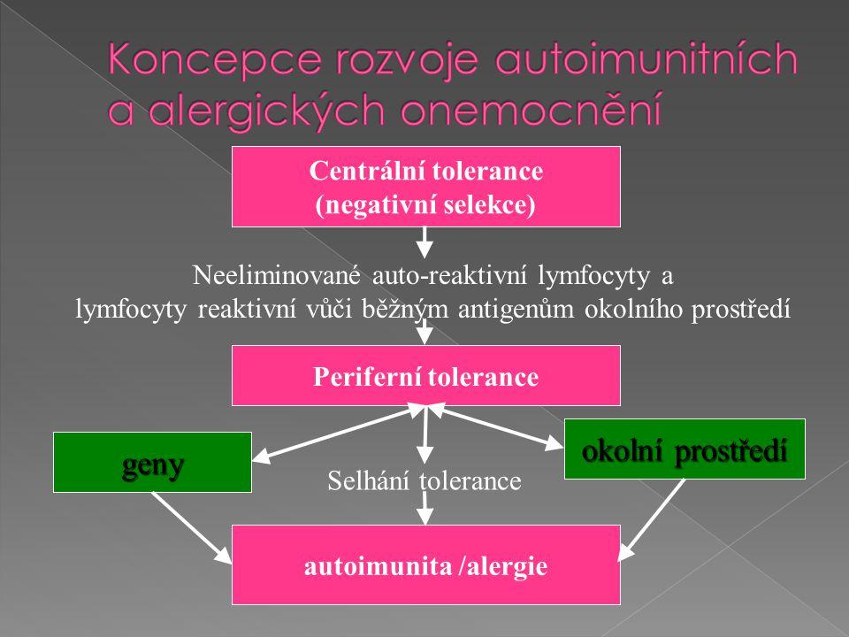 Centrální tolerance (negativní selekce) Periferní tolerance Neeliminované auto-reaktivní lymfocyty a lymfocyty reaktivní vůči běžným antigenům okolníh