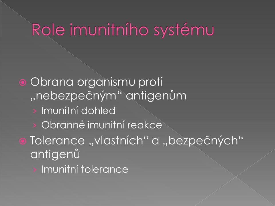 """ Obrana organismu proti """"nebezpečným"""" antigenům › Imunitní dohled › Obranné imunitní reakce  Tolerance """"vlastních"""" a """"bezpečných"""" antigenů › Imunitn"""